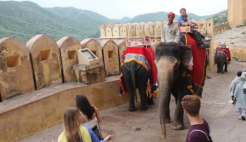 elephant rides in jaipur